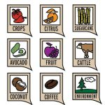 Harvest product Icon collection