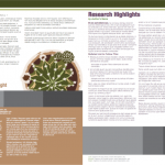 The Plant Producer Newsletter Template Spread 3