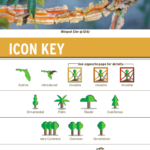 Tree Identification Icon collection