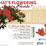 Florida Master Gardener Infographic