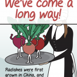 UF Extension Radish Festival poster 3 of 6