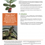Plant Disease Fact sheet