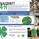 4-H poster projects
