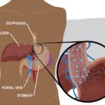 UF Medical Graphics A