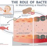 Diabetes Microbes illustration